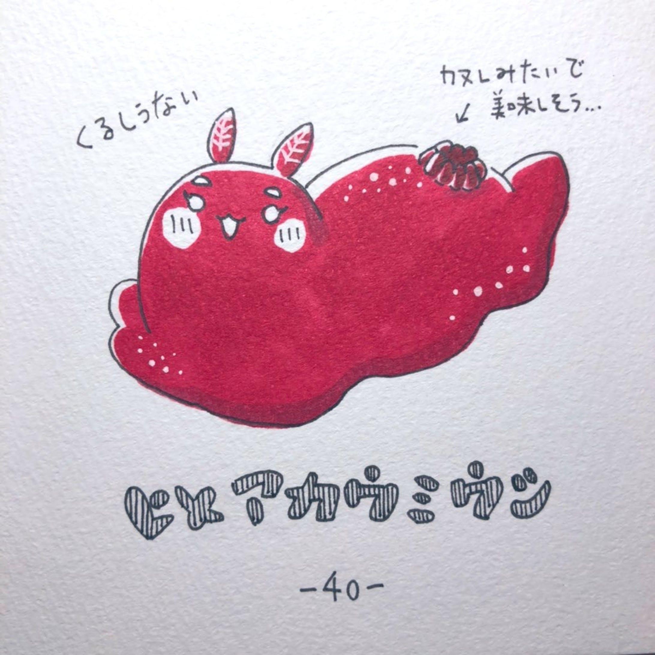 #毎日ゆるかわウミウシ(15〜60)-28