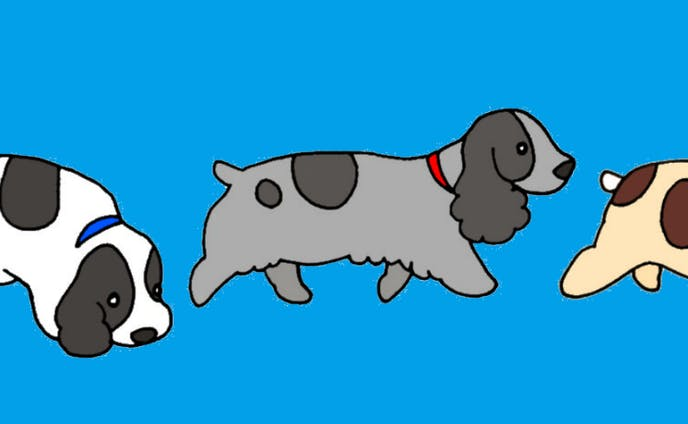 ヘッダー用犬のイラスト