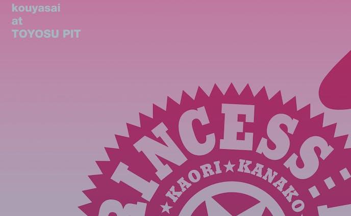 PRINCESS PRINCESS TOUR 2012-2016 SAIKAI / PRINCESS PRINCESS