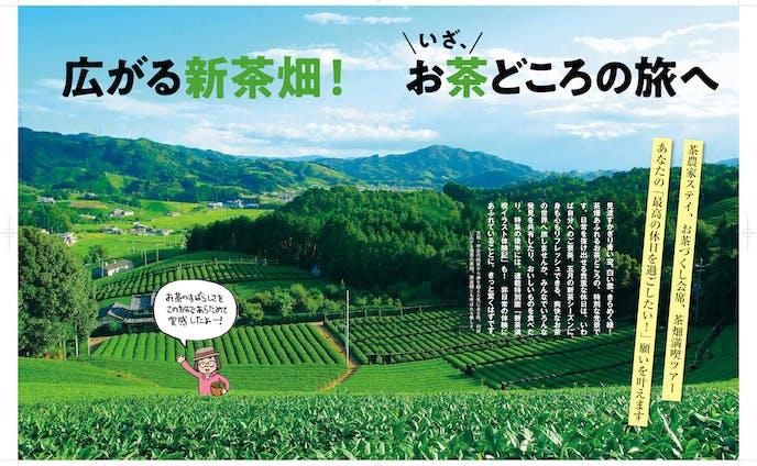 京都の茶どころ・和束の記事