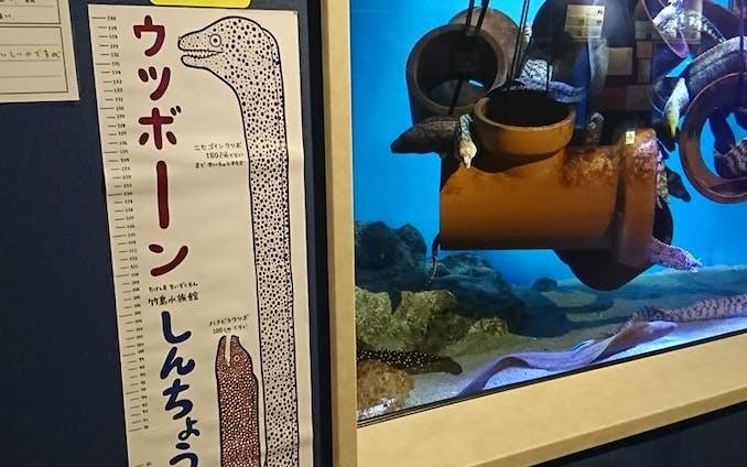 竹島水族館 おみやげ商品