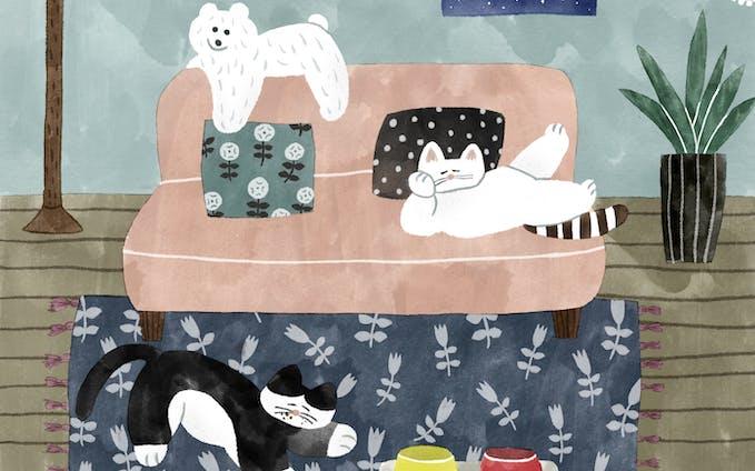 イラスト | 猫たちとくまのぬいぐるみ