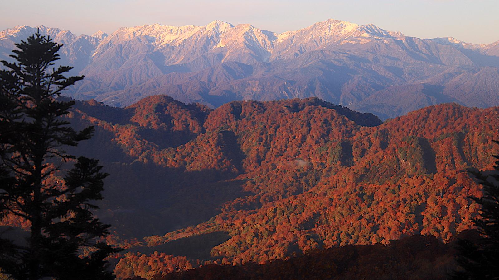 【山旅実践編】秋の妙高山・火打山へエクストリームな日帰り登山