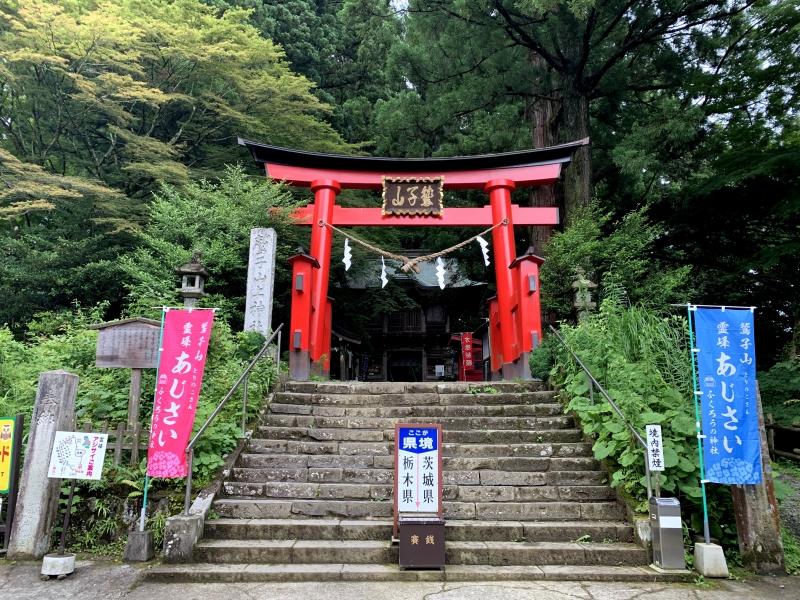 栃木県と茨城県の県境にあり!フクロウの神社「鷲子山上神社」の見どころ